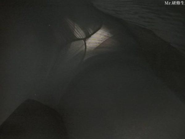 PcolleレビューGcolleMr研修生114 パン屋の店員さん03 白パンツ 黒スト 破れ-6