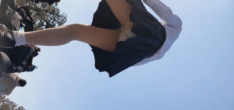 PcolleレビューGcolleパンチラたぴおか#17 夢の国@お城前でイチャイチャするJKのスカートの中見えっぱなし。撮影しながら声かけ25